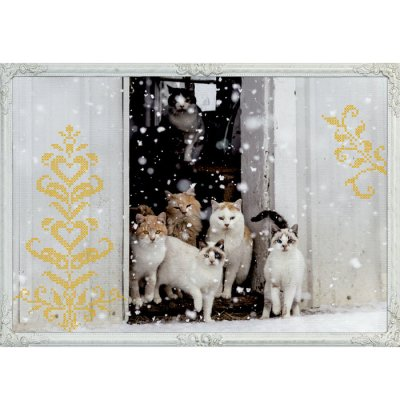 Christmas calendar Cats in snow