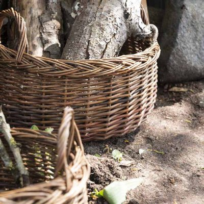 Basket willow, different sizes