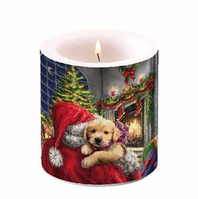 Candle Puppy At Fire 10 cm
