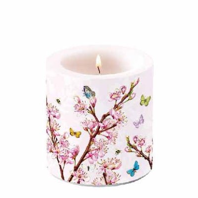 Candle Blossom Rose  10 cm