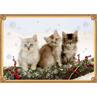 Christmas calendar Kittens in snow