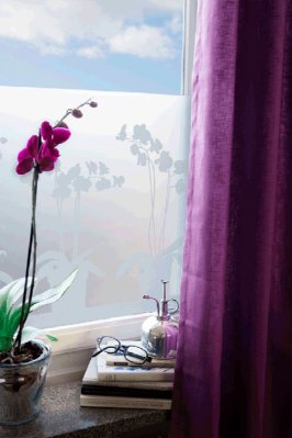 Window film Orkidea 34x98 cm