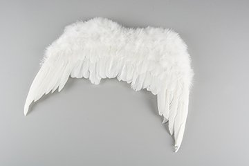 Feather wings 37 cm