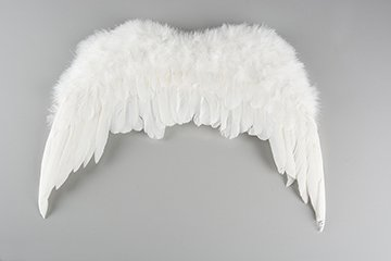 Feather wings 46 cm